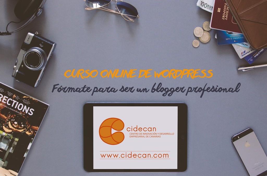 Curso Online de WordPress Profesional